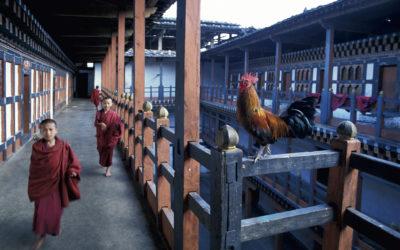 bhoutan's train !