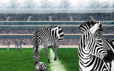 Turin et la Juventus