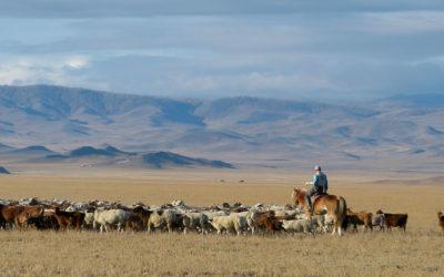 carnet de voyages – mongolie