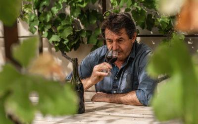 vins du beaujolais- domaine jean foillard –