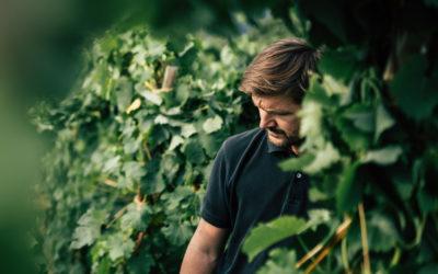 Vignerons – Stéphane Ogier