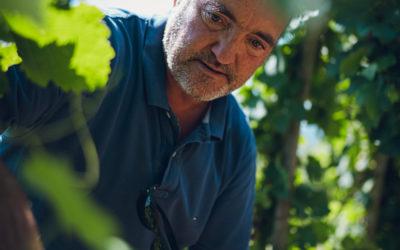Yves Cuilleron, vigneron